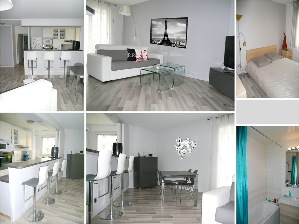 R alisations appartements maisons conseil d coration for Deco appartement gris